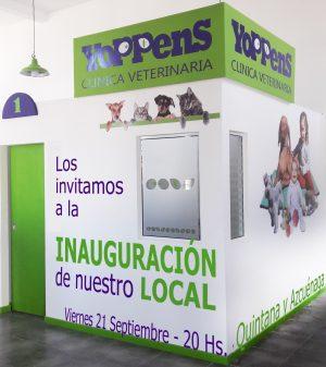 Diseño digital , Manejo de redes sociales. Impresiones color en 48hs Tarjetas . Folletos . Posters María Salas