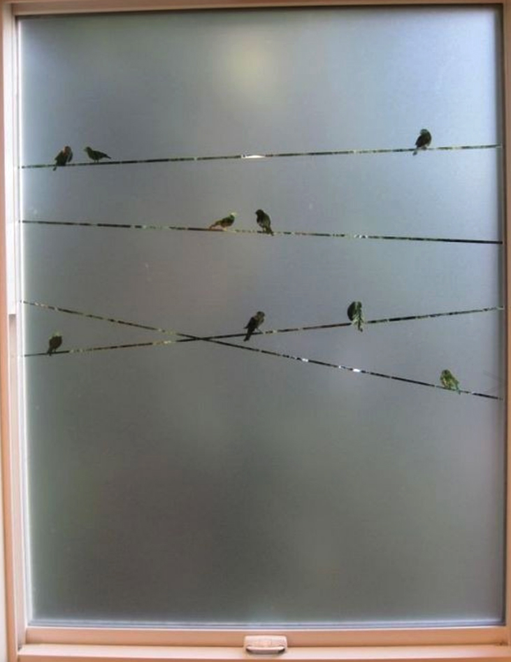 vinilos para ventanas by María Salas
